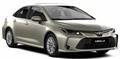 Corolla XII 2019-2020